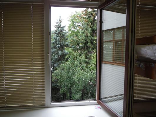お部屋の窓からは緑